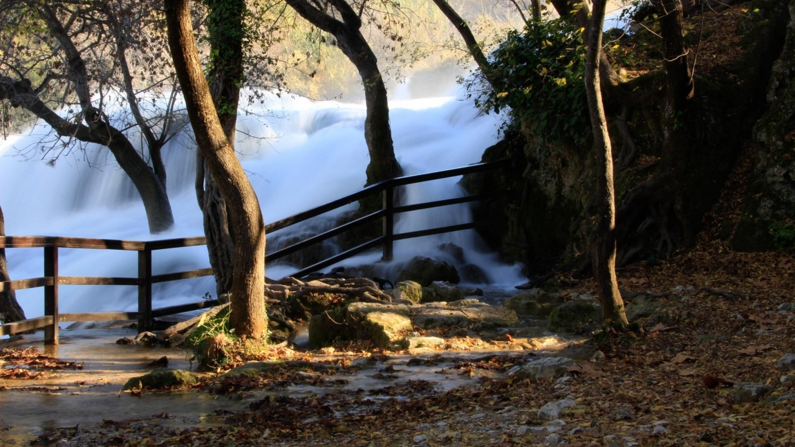krka waterfall and tree croatia holidays